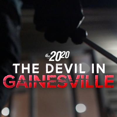 Cover art for The Devil in Gainesville