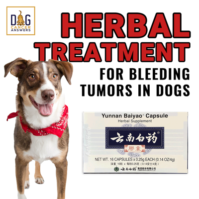 Cover art for Herbal Treatment for Bleeding Tumors in Dogs │ Dr. Demian Dressler Q&A