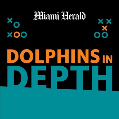Dolphins in Depth