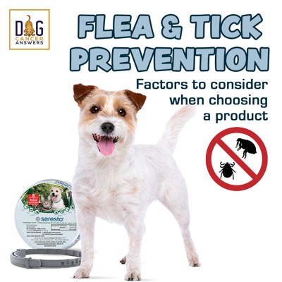 Cover art for Flea and Tick Prevention: Factors to Consider When Choosing a Product │ Dr. Nancy Reese Q&A