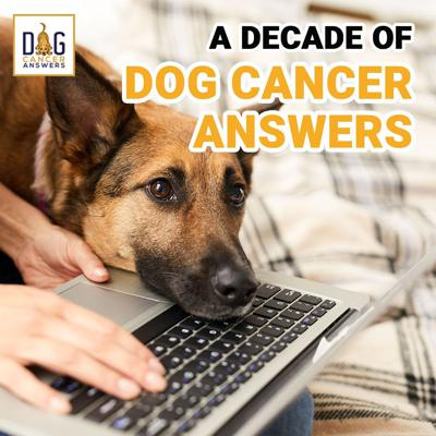 Cover art for A Decade of Dog Cancer Answers │ Rewind with Dr. Demian Dressler