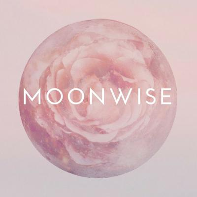 MoonWise features conversations with women of power. Join host Dorothée Sophie Royal for interviews about natural approaches to self care, health and creativity. Our guests are wisdom carriers, artists, mothers and leaders who are nourishing life in big and subtle ways. Each episode is created to help you connect with nature's rhythms and celebrate the beauty medicine in you. Follow us on Instagram @MoonTentCo and check out the show notes at moontent.co.