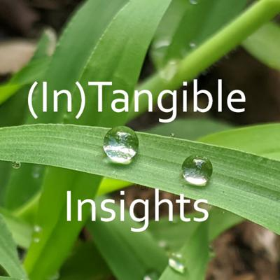 (In)Tangible Insights