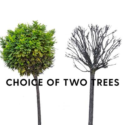 Cover art for Choice of two trees