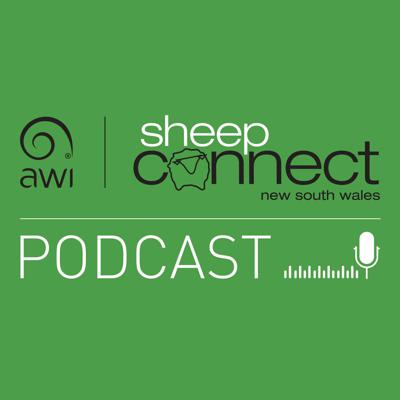 Sheep Connect NSW Podcast
