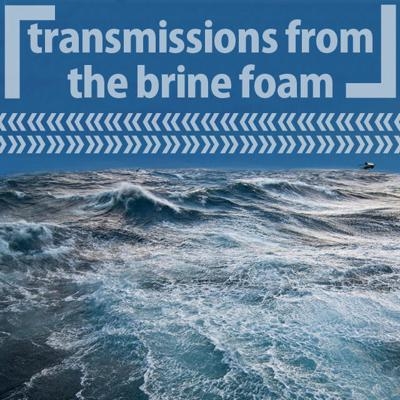Cover art for 13: 「Transmissions from the Brine Foam」