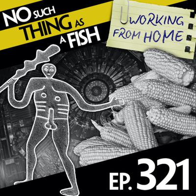 Cover art for 321: No Such Thing As A Frothy Beer