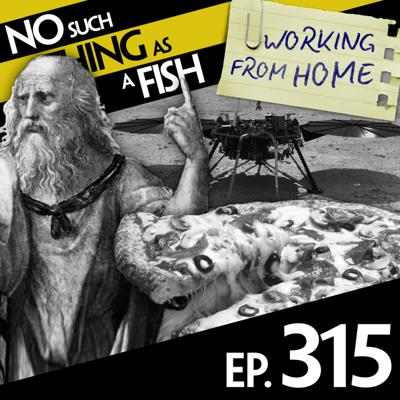 Cover art for 315: No Such Thing As Tedious Moss