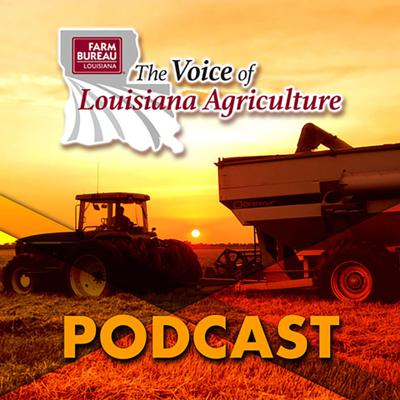 The Voice of Louisiana Agriculture Podcast