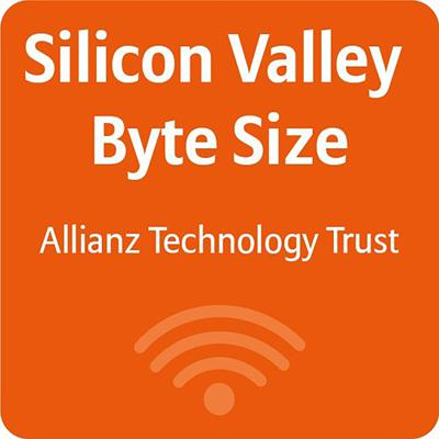 Silicon Valley: Byte Size