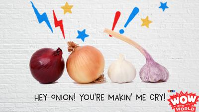 Cover art for Hey Onion! You're Makin' Me Cry!