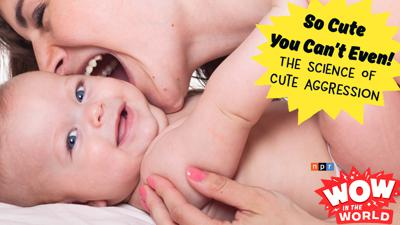 Cover art for So Cute You Can't Even! - The Science Of Cute Aggression