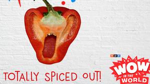 Cover art for Totally Spiced Out!