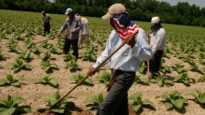 Cover art for #984: Food And Farmworkers