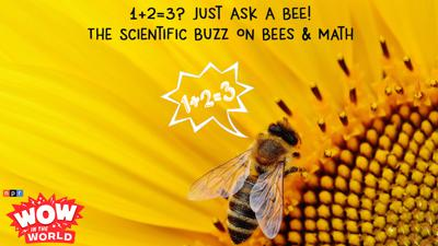 Cover art for 1+2=3? Just Ask A BEE! - The Scientific Buzz On Bees & Math (encore)