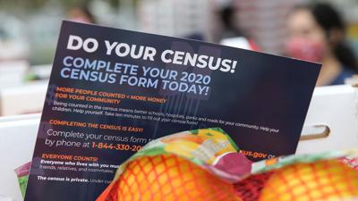 Cover art for Economic Consequences Of The Census