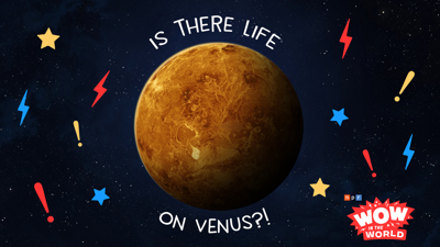 Cover art for Is There Life on Venus?