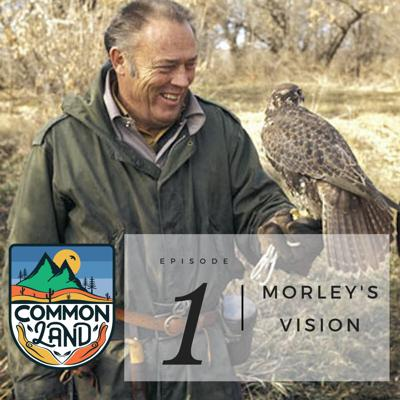 Cover art for INTRODUCING: Common Land - Episode 1: Morley's Vision