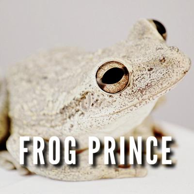 Cover art for The Frog Prince by The Brothers Grimm 1812