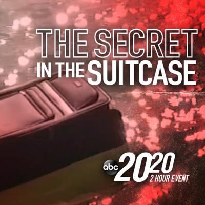 Cover art for The Secret in the Suitcase