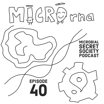 Cover art for #40 MicroRNA: Biological Widget Plagues & Operating Systems