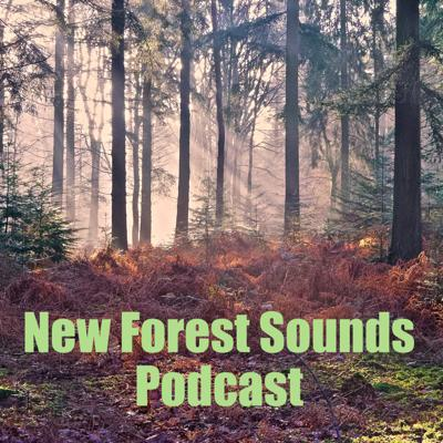 New Forest Sounds
