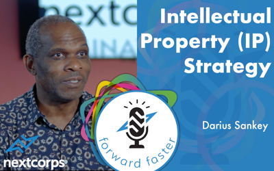 Cover art for Intellectual Property (IP) Strategy