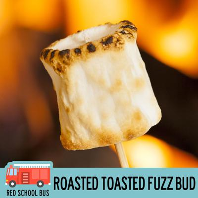 Cover art for 31: Roasted Toasted Fuzz Bud