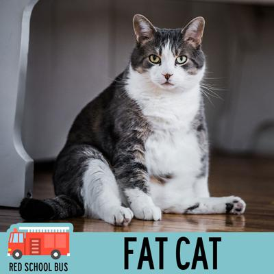 Cover art for 29: Fat Cat
