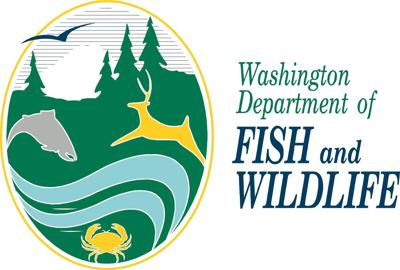 Cover art for Washington State Recreational Fishing REMAINS CLOSED!