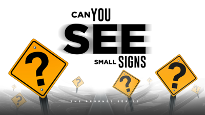 Cover art for Can You See Small Signs
