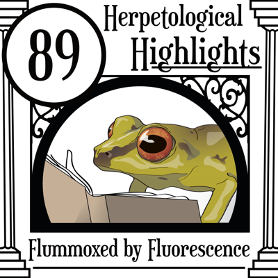 Cover art for 089 Flummoxed by Fluorescence