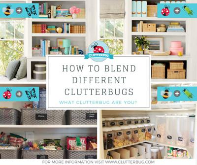 ClutterBug Podcast - Organize, Clean and Transform your Home