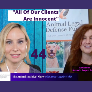 Cover art for Animal Legal Defense Fund Interview | Ep 44