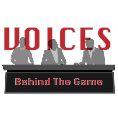 Voices Behind the Game