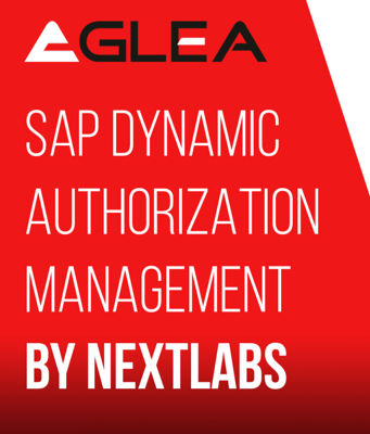 Cover art for SAP Dynamic Authorization Management by Nextlabs