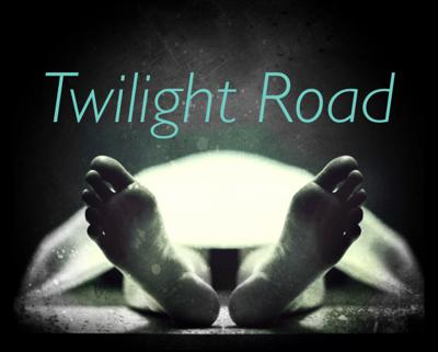 Cover art for Twilight Road