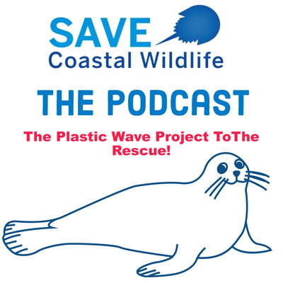 Cover art for The Plastic Wave Project ToThe Rescue!