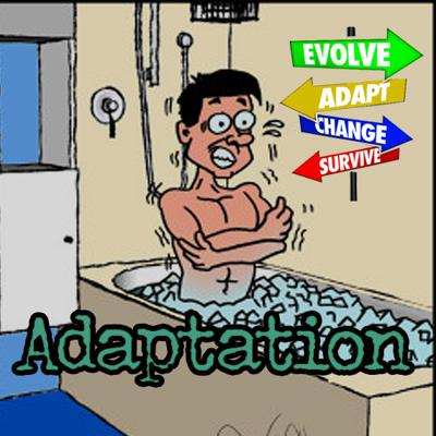 Cover art for Ice Water Adaptation EP13