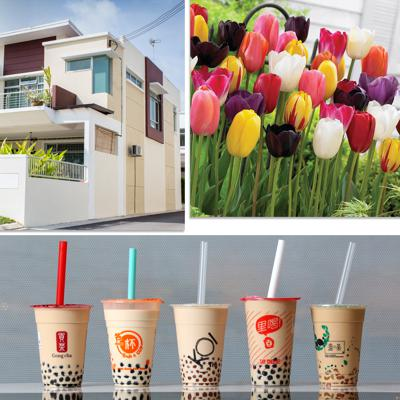 Cover art for Bursting Bubbles; Tulips, Houses and Trendy Beverages