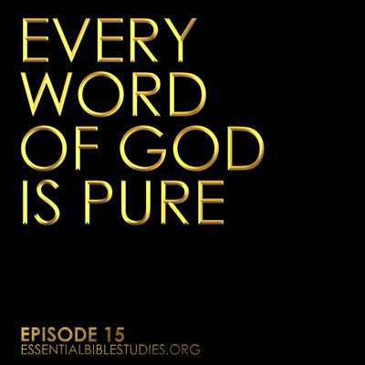Cover art for Every Word of God is Pure