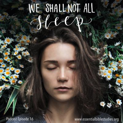 Cover art for We Shall Not All Sleep