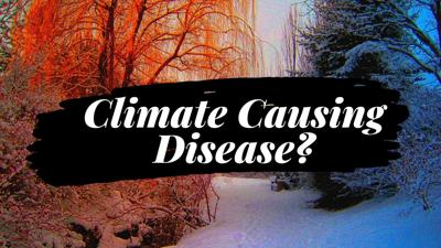 Cover art for External Causes of Disease   How The Weather Can Make You Sick   Acupuncture is my Life