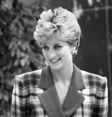 Cover art for Diana, Princess of Wales - a fresh perspective