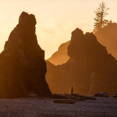 Cover art for Episode 2.10: A Virtual Tour of Olympic National Park