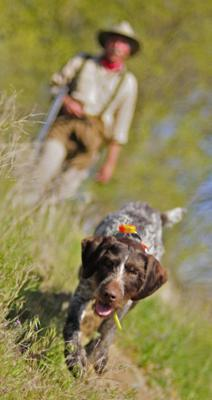 Cover art for Bird hunting basics: or are they? Some suggestions that might help you shoot better in the field.