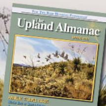 Cover art for Making an upland bird hunting magazine, public bobwhites, dog gear, your gear recommendations