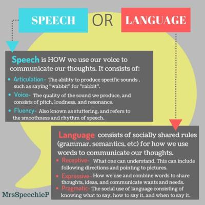 Cover art for Speech vs Language- This Misconception