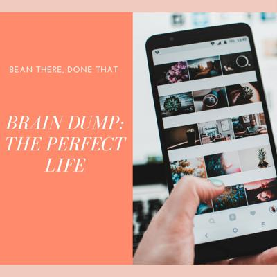 Cover art for The Perfect Life