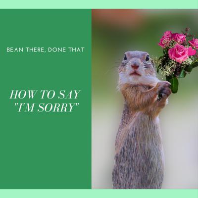 Cover art for How to Say